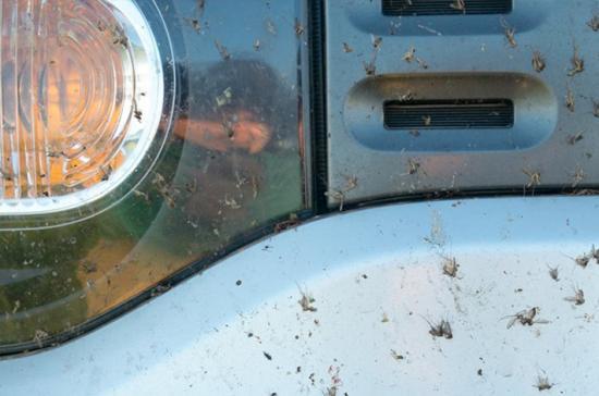 Những lời khuyên hữu ích khi rửa xe hơi 4