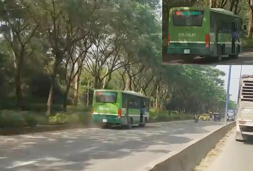 xe bus chạy ngược chiều