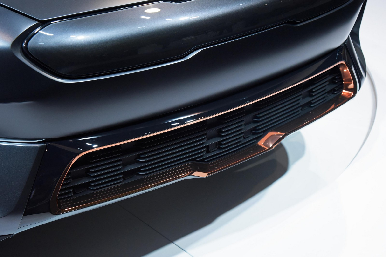 Xe Kia Niro EV Concept 7