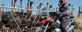 16 mẫu mô tô BMW vừa bị phát hiện lỗi gãy bánh sau