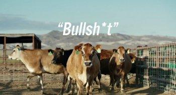 """Toyota Mirai sẽ """"chạy"""" bằng phân bò?"""