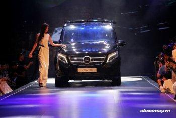 Mercedes-Benz V 220 CDI đi tìm nhóm khách hàng mới