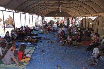 Audi trợ cấp 1 triệu Euro cho người tị nạn