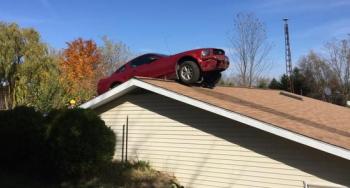 Ngựa hoang Ford Mustang đậu trên… nóc nhà