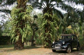 Nơi bày nhiều xe cổ bậc nhất Sài Gòn