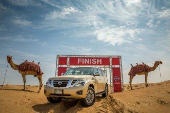 """Chán """"sức ngựa"""", Nissan đo công suất động cơ bằng """"sức lạc đà"""""""