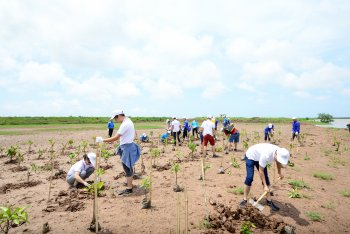 GM Việt Nam ứng phó với Biến đổi khí hậu