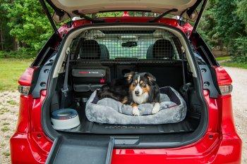 """Nissan X-Trail Paw Pack dành cho người """"yêu chó"""""""