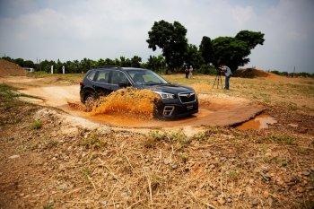 Lái thử Subaru Forester 2019… cực sướng!