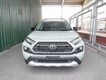 Toyota RAV4 2019 về Việt Nam giá đắt ngang Land Cruiser Prado