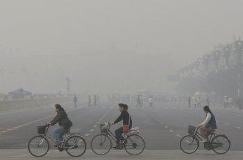 """Các thành phố đang cố """"cứu"""" Trái Đất khỏi tác hại của xe hơi"""